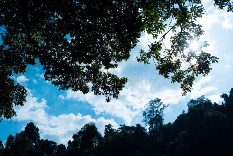 cloud nieba zdjęcie stock