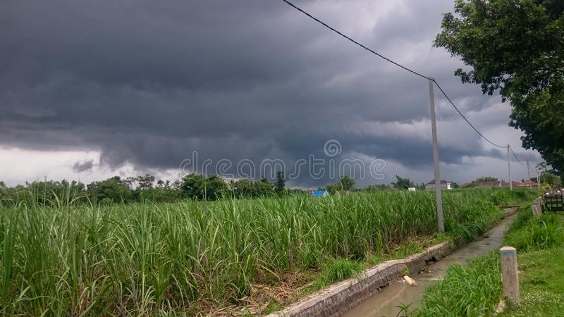 View of cloud before rain. Clouds that occur on young sugar cane plants along with electricity poles and irrigation canals stock photos