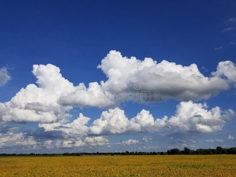 Cloud Scape royalty free stock photography