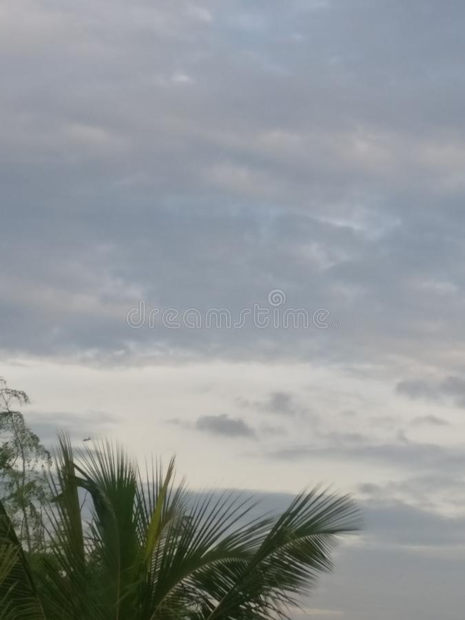 Cloud in the sky is beautiful view of the evening. Tree, top, view, greencolour royalty free stock photo