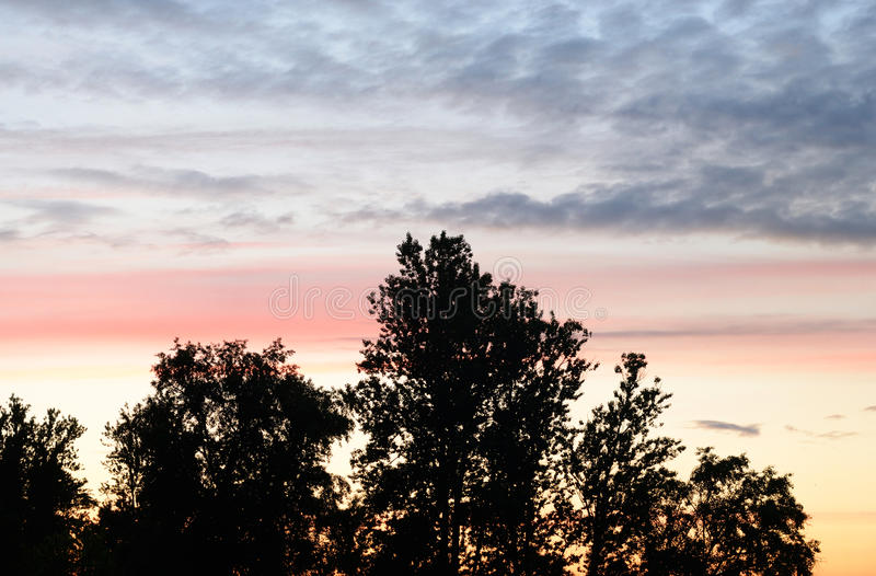 Cloud sky at sunset. Cloud sky at sunset over forest at evening stock photography