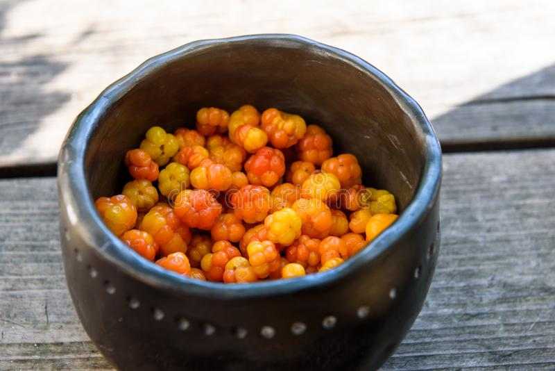 Cloudberries also known as nordic berries, latinic name - Rubus chamaemorus. In black clay bowl. Healthy and fresh food stock photos