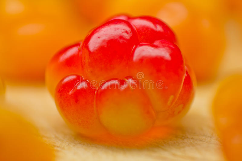 Cloudberries on a wooden surface stock images