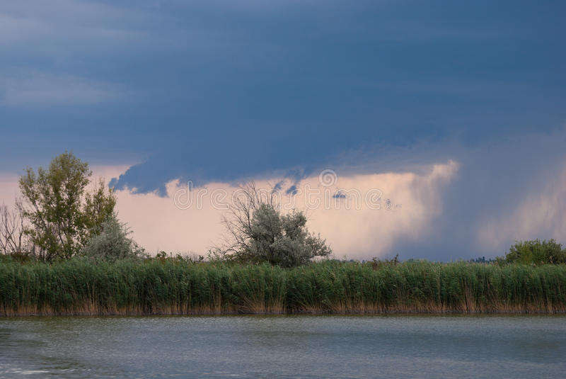 Cloudburst over a lake with reedbelt. A cloudburst over a lake with reedbelt. Neusiedlersee, Burgenland, Austria royalty free stock photos