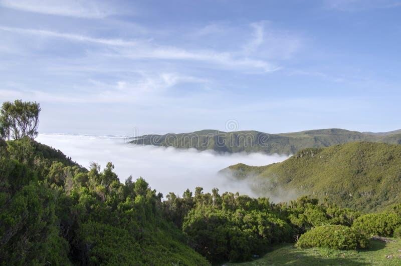 Cloudiness στην κοιλάδα, Rabacal, νησί της Μαδέρας, Πορτογαλία στοκ εικόνα με δικαίωμα ελεύθερης χρήσης