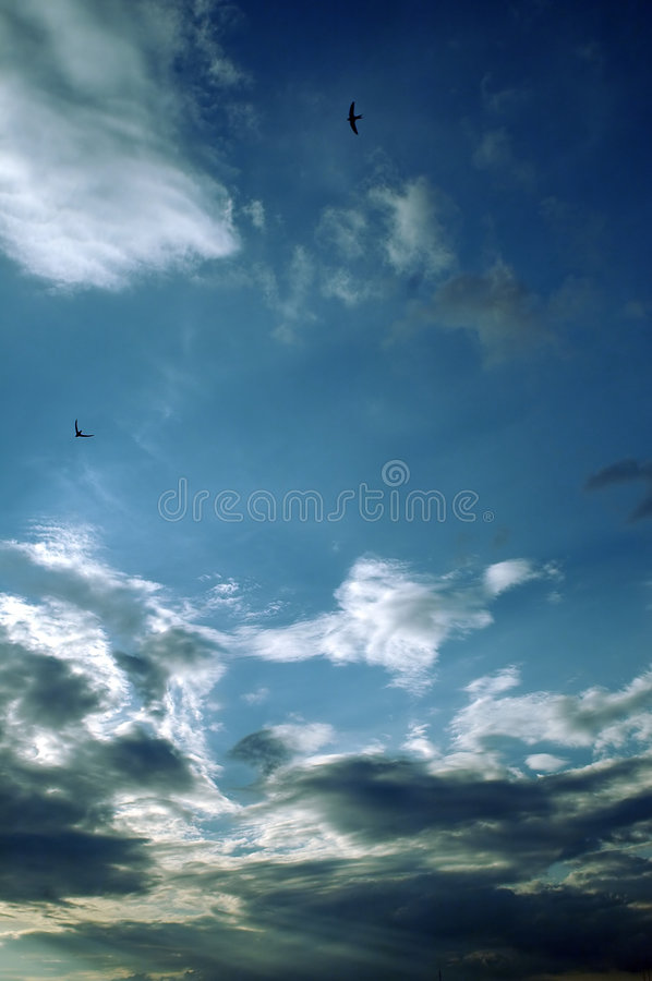 Download Clouds stock photo. Image of fluffy, shine, natural, scenery - 160278