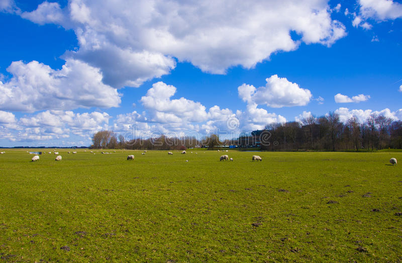 Clouds Above A Green Field Stock Photo