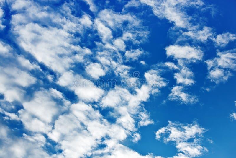 clouds fleecy royaltyfri bild