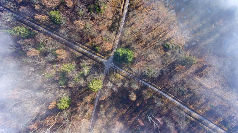 Clouds and mist and smoke from burning trees and fires shrouds a autumn forest in Switzerland. The bare tree tops can be seen poking through the smokey haze royalty free stock photography