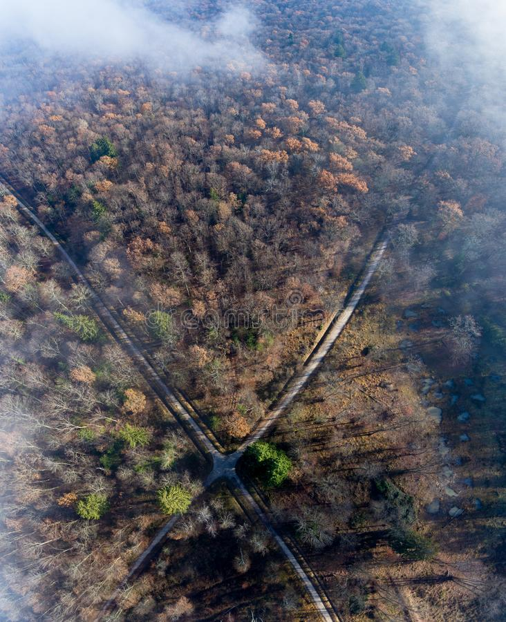 Clouds and mist and smoke from burning trees and fires shrouds a autumn forest in Switzerland. The bare tree tops can be seen poking through the smokey haze royalty free stock image