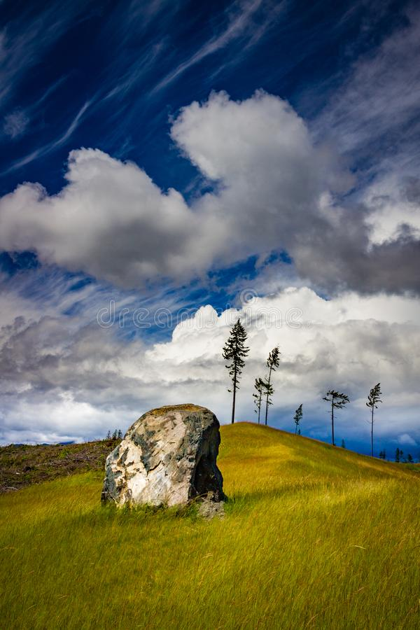 Field with rock on Olympic Peninsula, Washington. Rock in green field with dramatic blue sky with clouds in Olympic Peninsula, Washington, USA stock photo