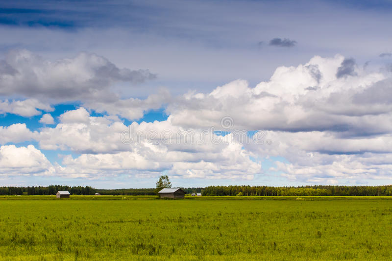 Clouds Over The Summer Fields stock image
