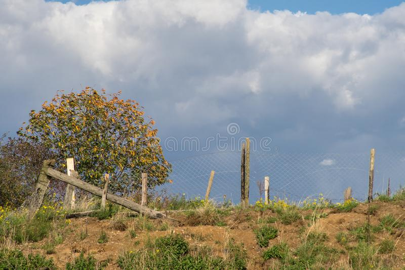 Clouds pile up behind a slope with a fence and a tree. stock photos