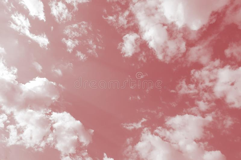 Clouds in the pink sky background. Clouds pink sky background stock image