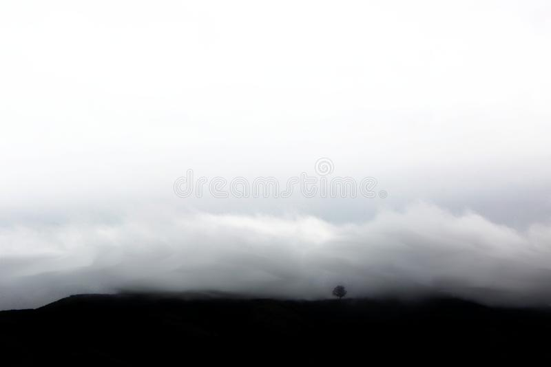 Clouds and Silhouette of Tree in California royalty free stock photo