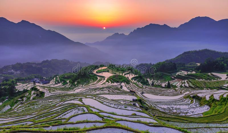 Clouds and terraces at sunrise. This is the sunrise of the cloud and terraces in Yunhe County, Zhejiang, China