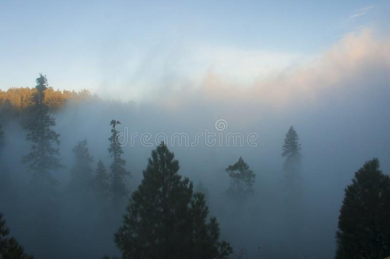 In the clouds on top of the mountain. The Sierra Nevada is a mountain range in the Western United States. stock images