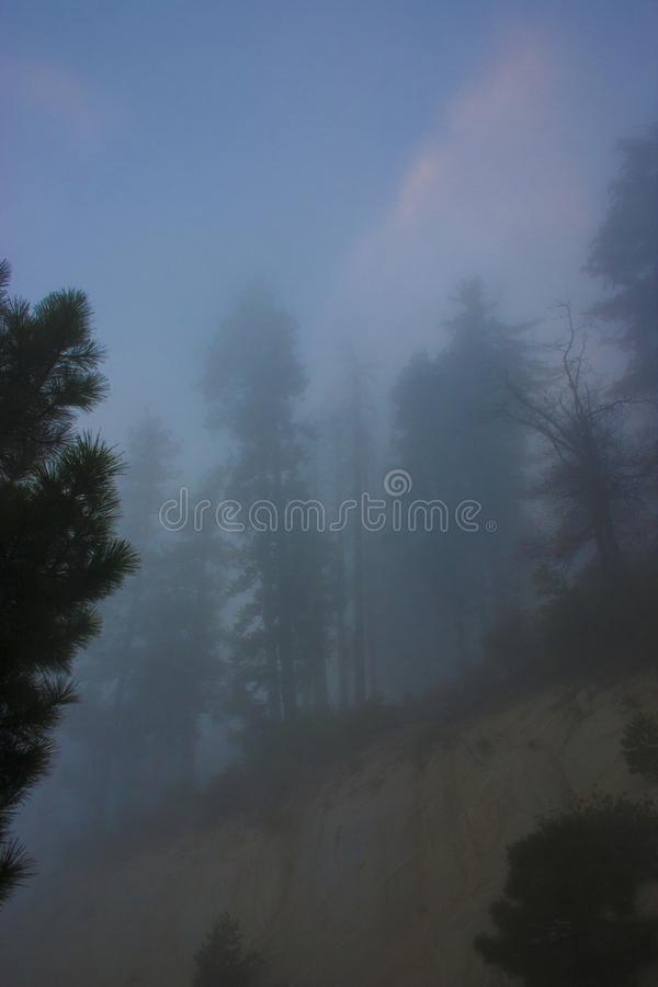 In the clouds on top of the mountain. The Sierra Nevada is a mountain range in the Western United States. royalty free stock photos