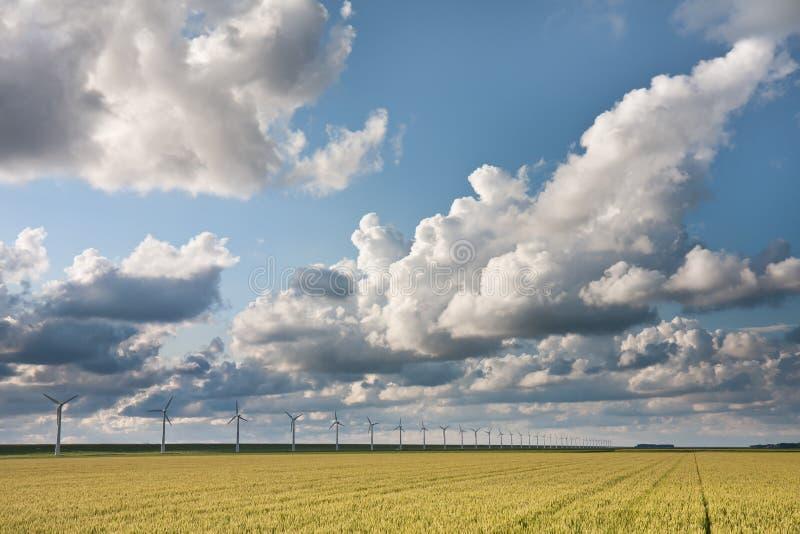 Cloudscape à la lumière du soleil de soirée photos libres de droits