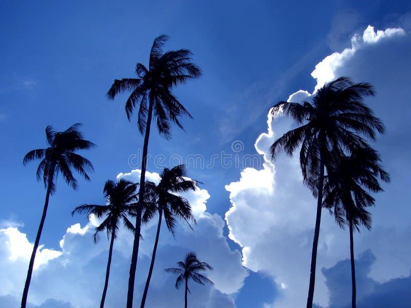 Cloudscape stock foto's