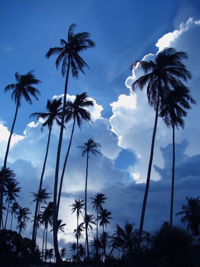 Cloudscape immagini stock