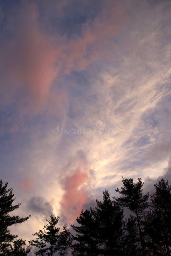 Δραματικό cloudscape πέρα από τα δέντρα στοκ φωτογραφία με δικαίωμα ελεύθερης χρήσης