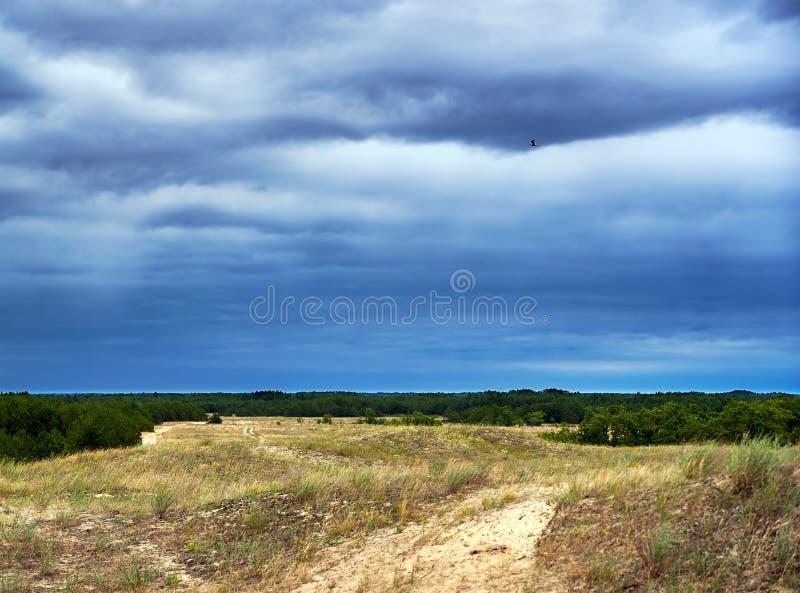 Cloudscape del paisaje de la pradera y del cielo de la tormenta imagenes de archivo