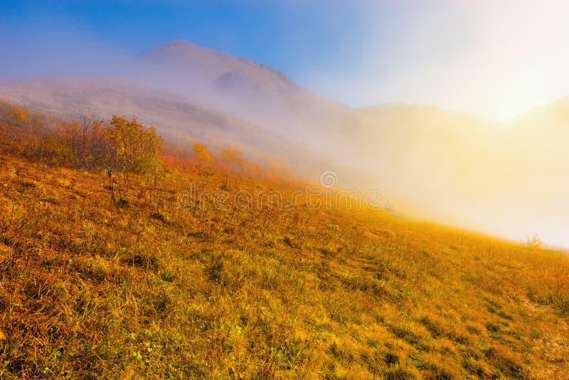 Cloudscape fantástico acima do prado da montanha imagens de stock