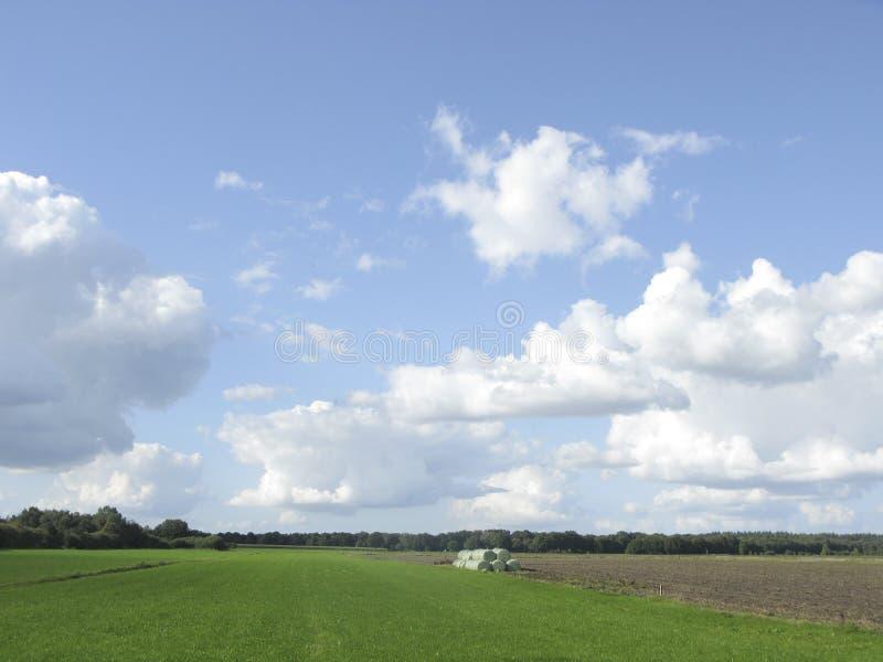 Cloudscape hollandais type en été image stock