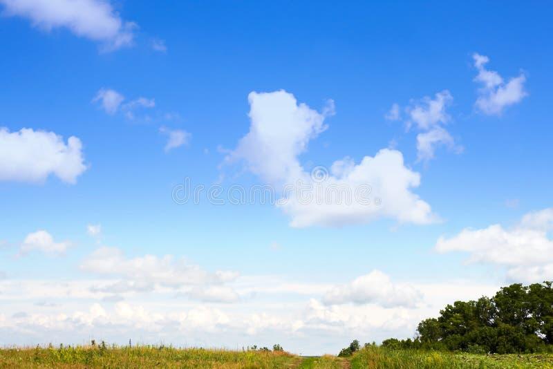 Cloudscape krajobrazu i nieba lato plenerowy z zieloną trawą fotografia stock