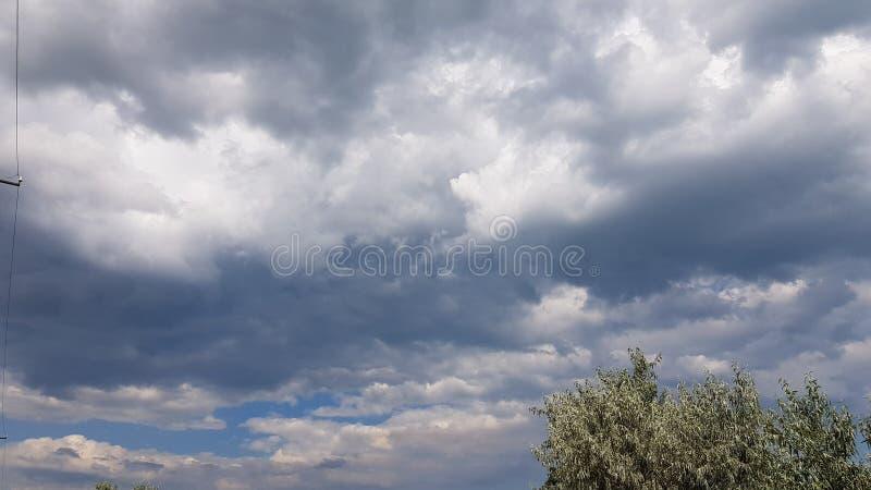 Cloudscape tormentoso do verão com folha verde da árvore imagens de stock royalty free