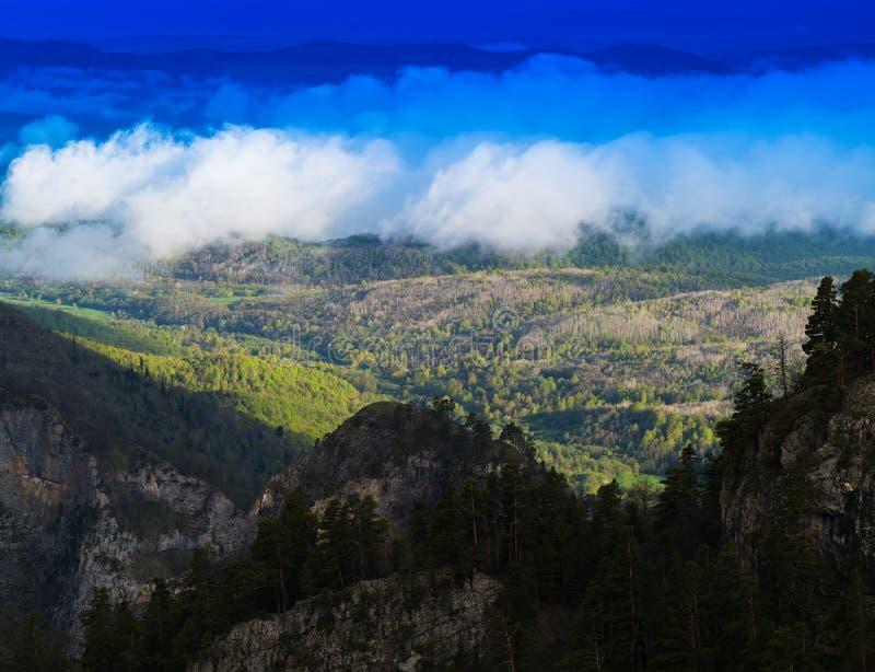 Cloudscape vívido horizontal no fundo da floresta da montanha fotos de stock