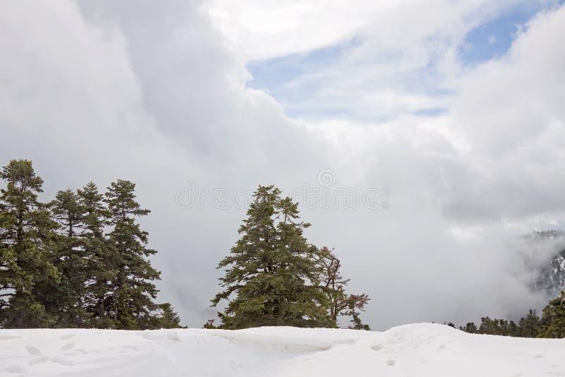 cloudscapebergvinter arkivfoton