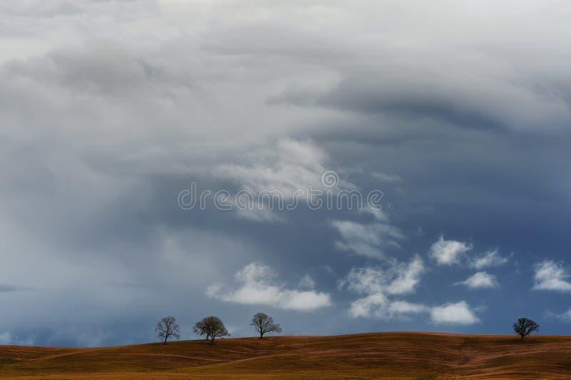 Cloudspace boven landbouwdiegrond met bomen wordt gestippeld stock foto