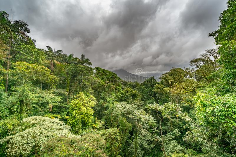 Cloudy angry sky over the jungle with mountain. In the distance royalty free stock photography