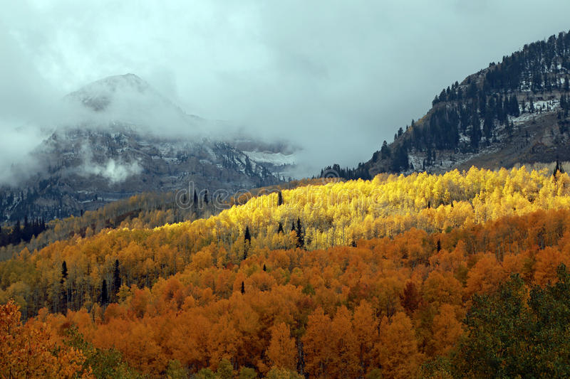 Cloudy autumn day in the Wasatch Mountains. stock images