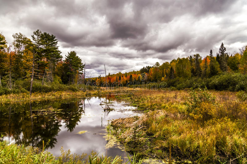 Cloudy autumn weather in Michigan. Dramatic cloudy weather in Michigan during fall season. Fall colors on trees are reflected in the pond royalty free stock photography
