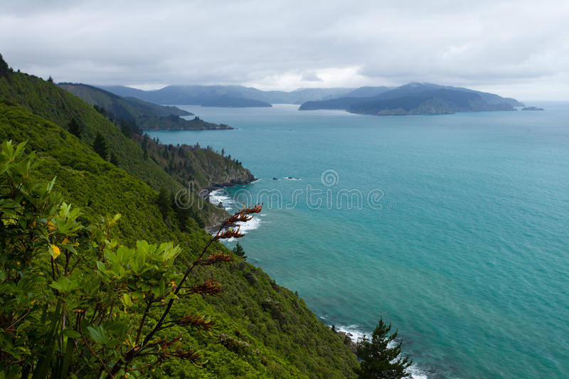 Download Cloudy Bay Of Marlborough Sounds, New Zealand Royalty Free Stock Image - Image: 24707326