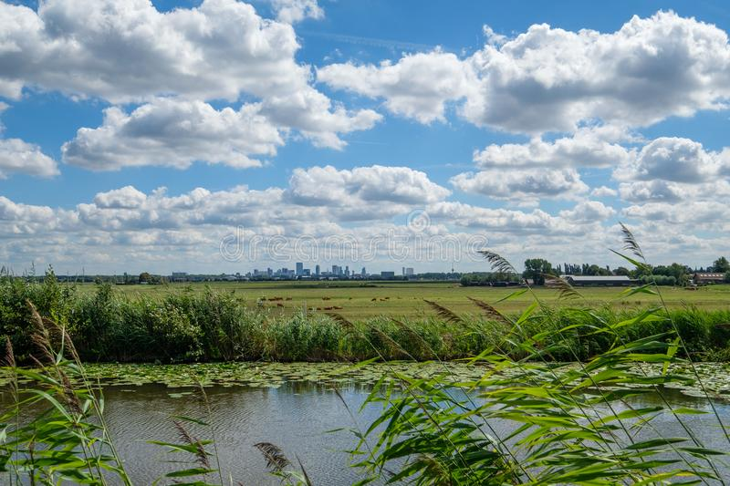 Cloudy blue sky and skyline of Rotterdam city seen from the polder. Cloudy blue sky and skyline of Rotterdam city seen from a polder canal, close to Rotterdam royalty free stock images