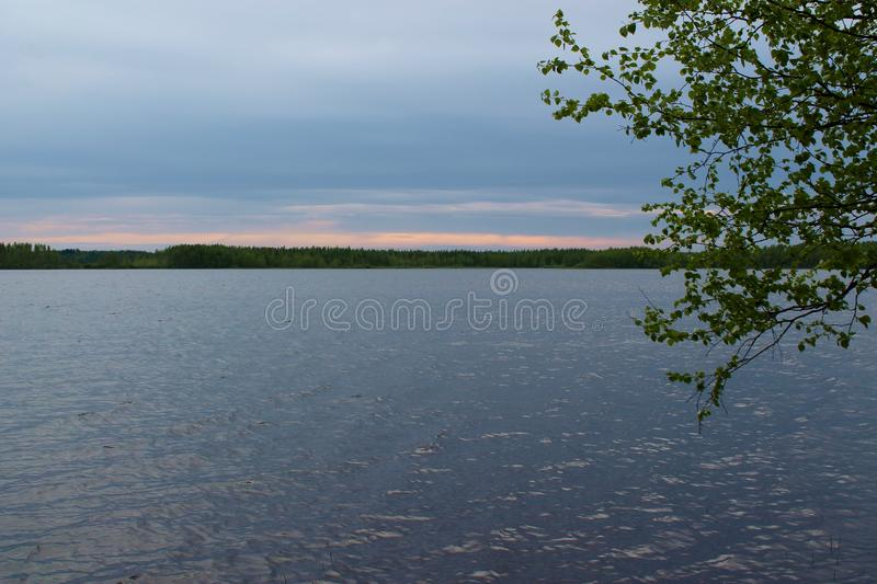 Cloudy day on the lake. In Finland. Birch leaves on the side and forest on the horizon stock images