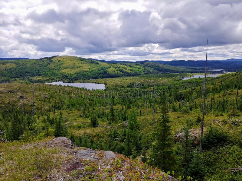 Cloudy day in Quebec's taïga in Charlevoix, Quebec national park, Parc National des Grands Jardins stock image