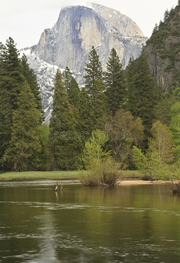 Cloudy Halfdome and Merced River. Clouds and snow shroud famous peak of Halfdome in the background as the lazy Merced River reflects the greenery of Yosemite royalty free stock images