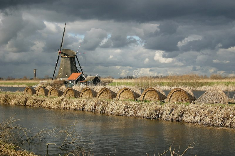 Cloudy Holland royalty free stock photo