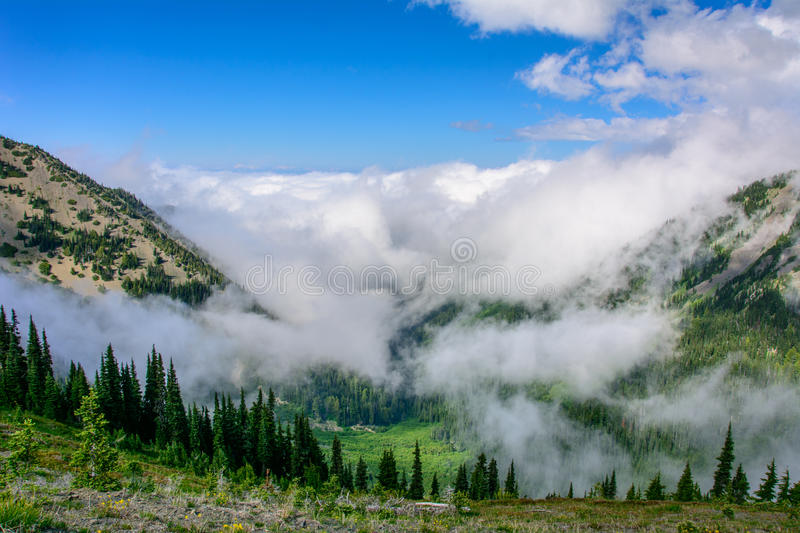 Cloudy landscape in mountains, Olympic National Park, Washington, USA. Cloudy landscape in mountains, Olympic National Park, Washington stock photos