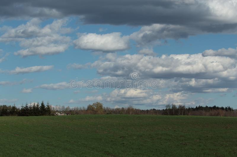 Cloudy Lithuanian autumn meadow stock image