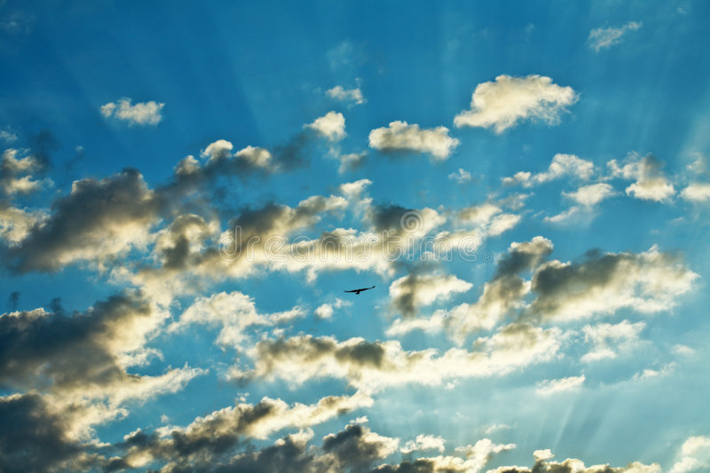 Download Cloudy morning sky stock image. Image of sunbeam, sunny - 6236179