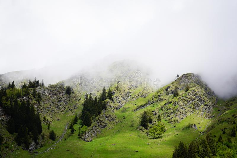 Cloudy mountain fog on top of the alps royalty free stock image