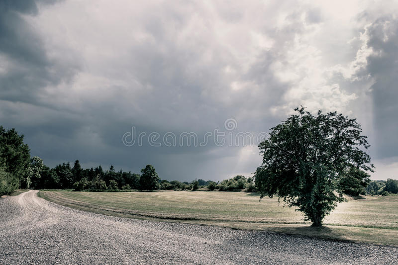 Cloudy nature scenery. Road in a cloudy nature scenery royalty free stock photos