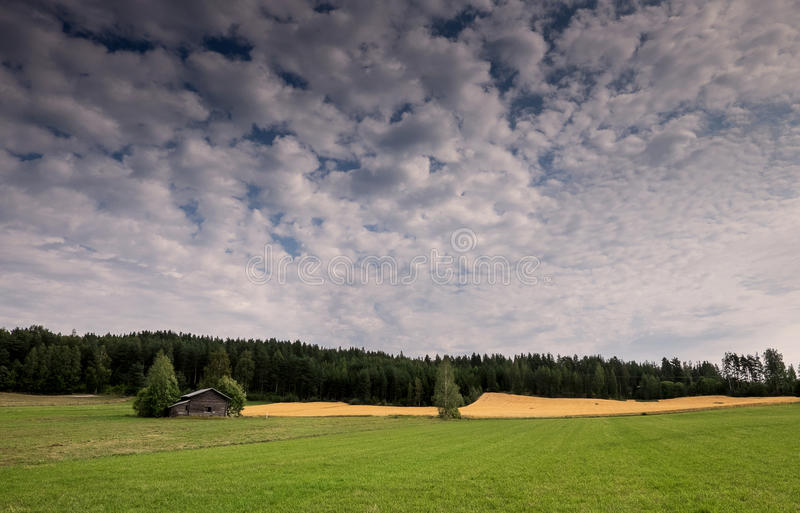 Cloudy. royalty free stock photography