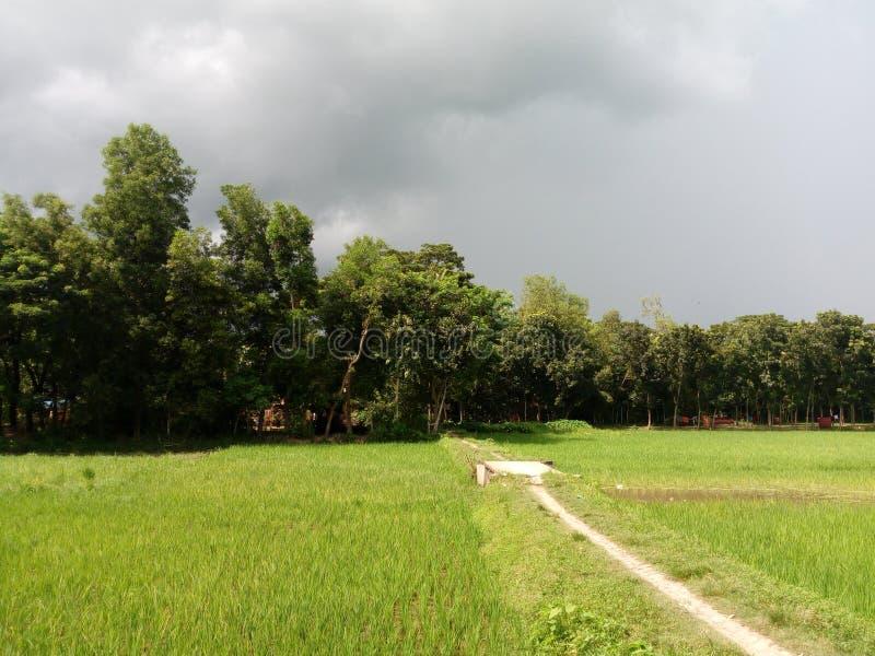 Cloudy sky från byn royaltyfri foto